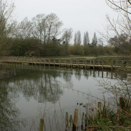 Stanborough Lake 5